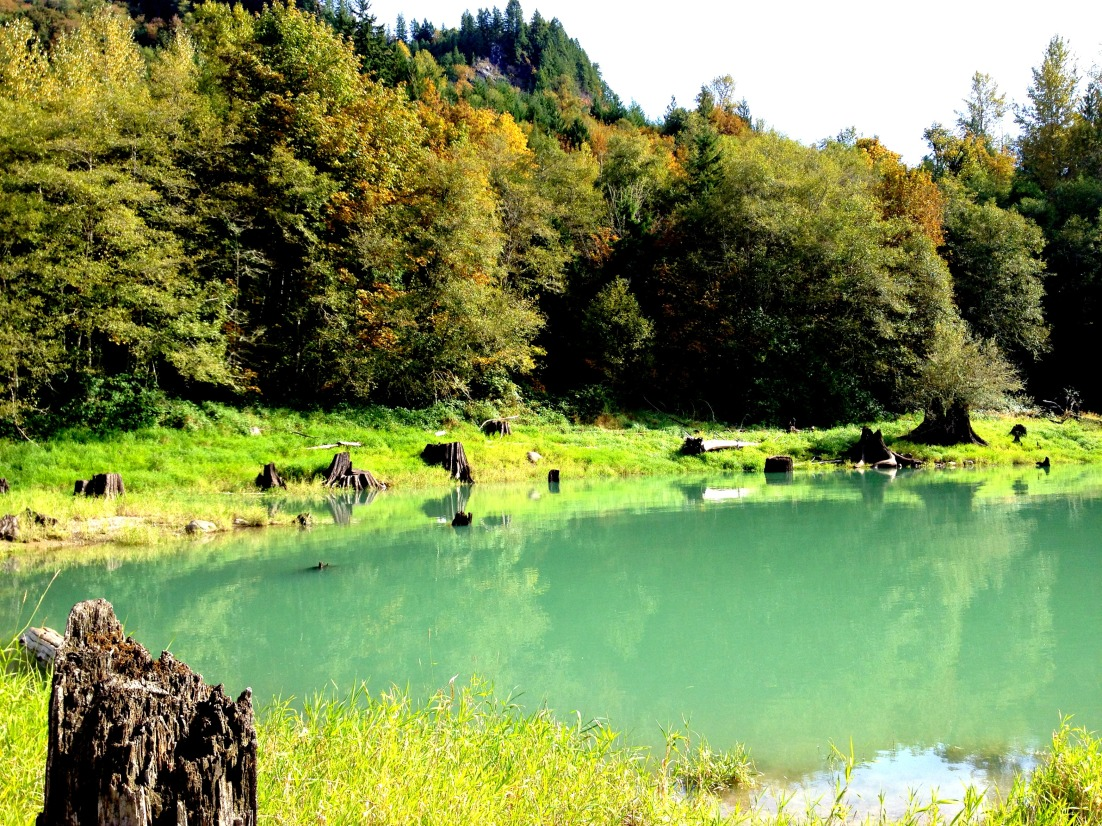 Lake Shannon 14
